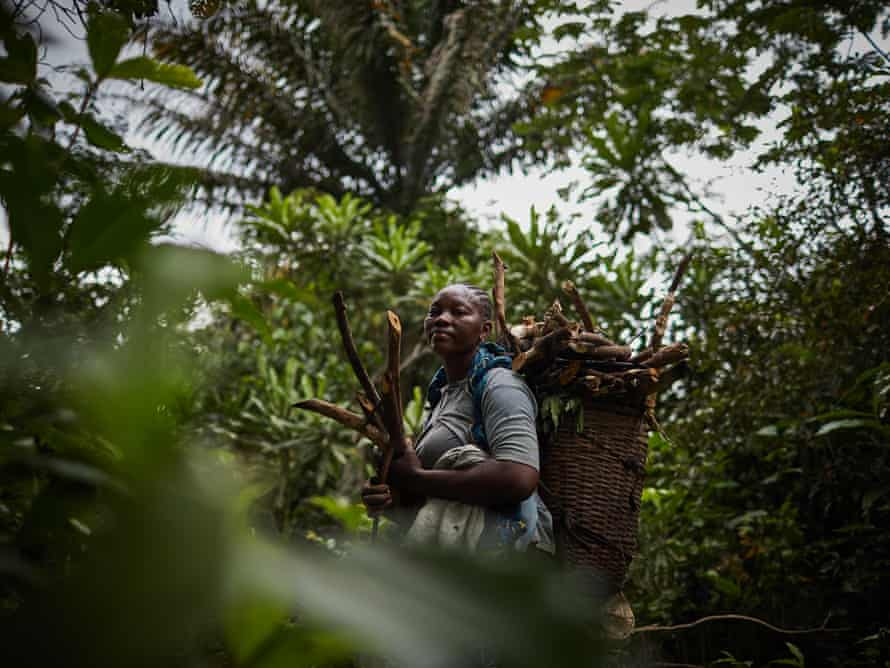Mama Chantal collects wood in the forests around Ikengo, Équateur province