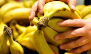 Bananas in a supermarket