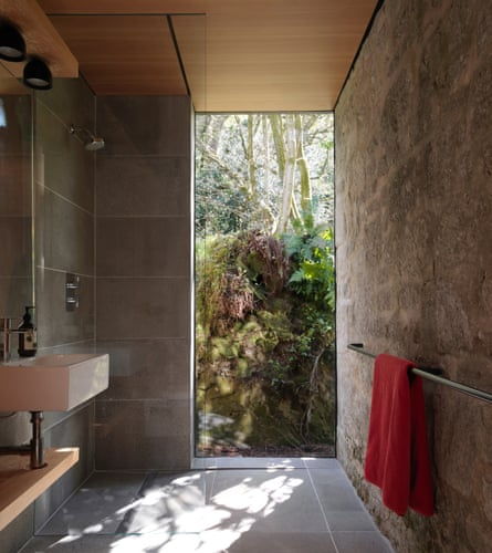 Let there be light: the shower has a glass wall which opens on to a fern bank.