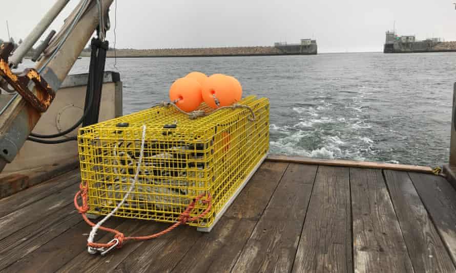 EdgeTech Ropeless Fishing System