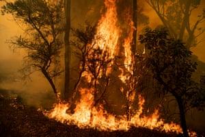 Fire front at Kulnura, near Mangrove Mountain.