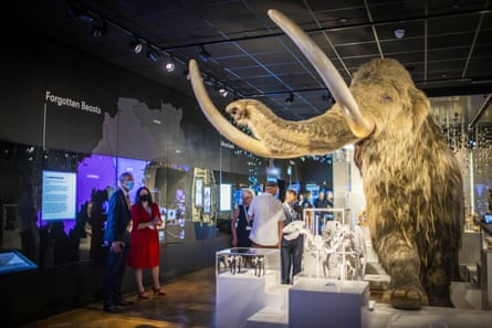 The woolly mammoth inside The Box, a multi-disciplinary arts heritage museum space in Plymouth.