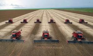 Harvesting a soybeans crop in Campo Novo do Parecis, Mato Grosso, Brazil