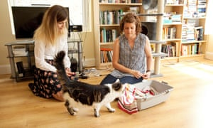 Cat trainer Sarah Ellis encourages Betty to like her cat carrier.