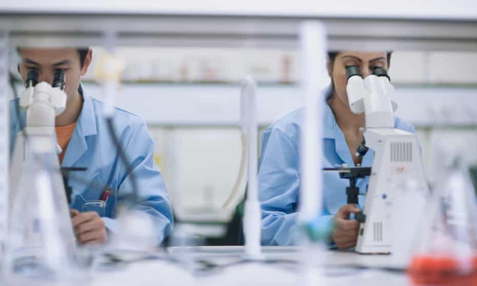 Scientists working in a laboratory with microscopes.