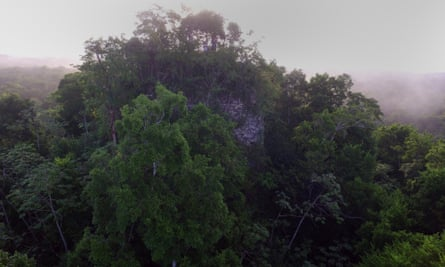 A ruined Mayan pyramid, covered in trees.