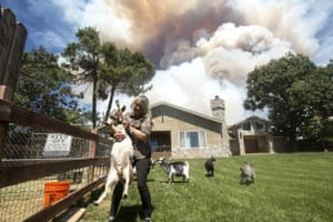 Diane Brickley returns home to take care of her goats after she was evacuated as the 'Apple Fire' burns nearby