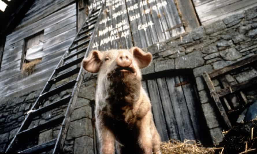 Snowball in the 1999 film Animal Farm