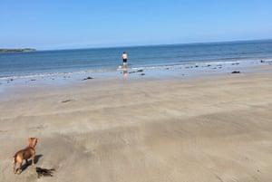 Sebastian Barry on Ross back beach, County Mayo