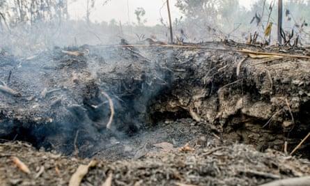 Fires on peatlands area in Palangka Raya, Central Kalimantan