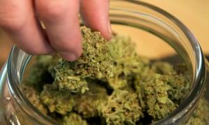 medical marijuana dispensary in Portland, Oregon
