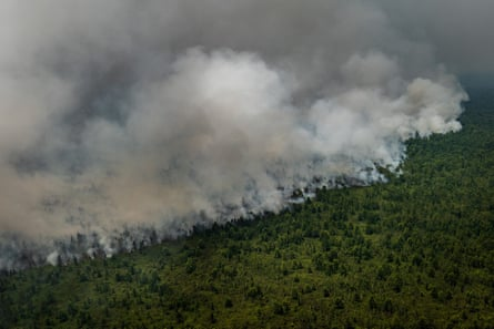 Peatland and forest burns in Indonesia during last year's dry season. Techniques to promote rain are being used to prevent a repeat of the devastating fires.