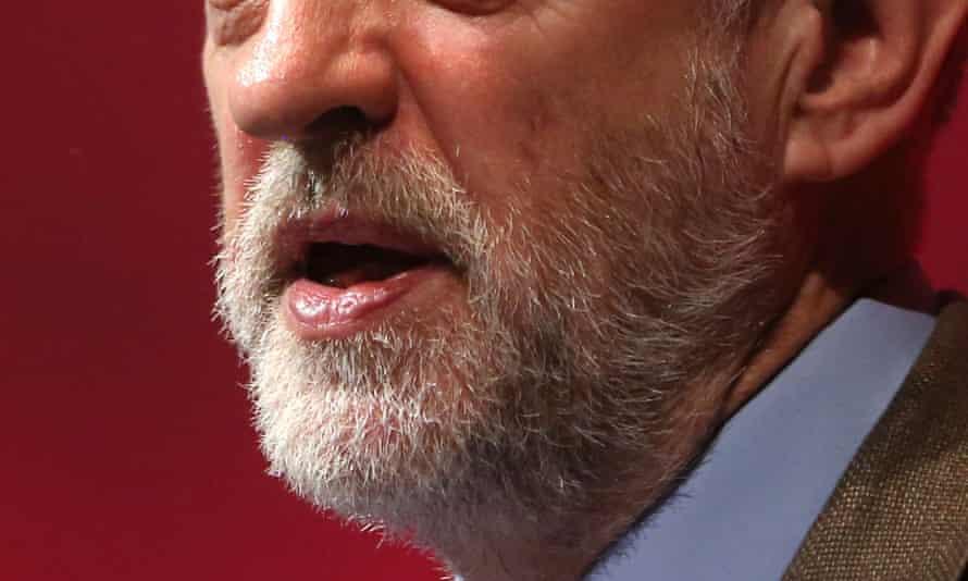 Jeremy Corbyn's beard.