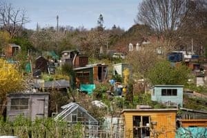 The Midmar allotments in Blackford Hill, Edinburgh