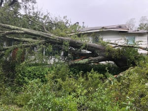 A massive tree felled by Florence in front of a Wilmington, North Carolina home.