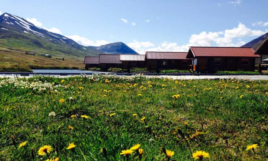 Meadows surrounding Brimnes Cabins, north Iceland