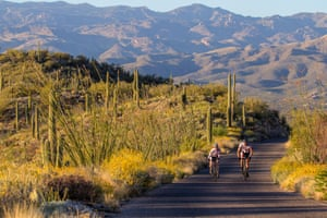Cyclists ride the Cactus Loop road in Saguaro national park
