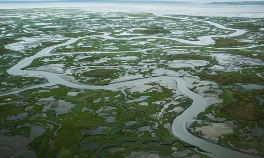 The soils of Alaska's tundra are taking longer to freeze over than in past decades.