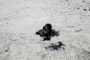 A diver swims along the Caddebostan shore of the Marmara sea to inspect the mucilage