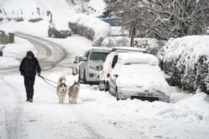 Huskies being walked in Allenheads in the North Pennines