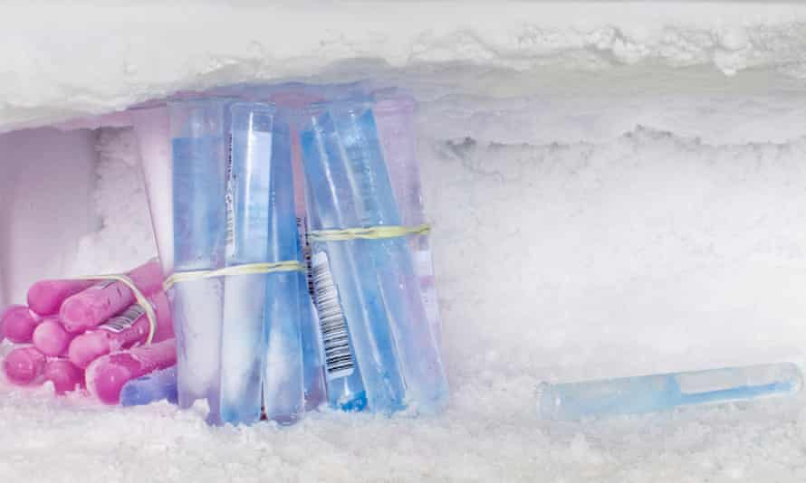 'Egg freezing offers hope – the possibility that you can delay motherhood until you've got your life in order': professor Emily Jackson.