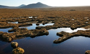 The Flow Country – the largest blanket bog in Europe.
