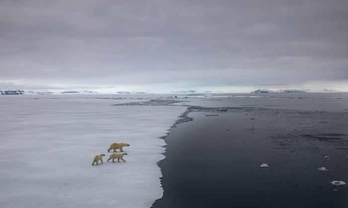 Domino-effect of climate events could move Earth into a 'hothouse