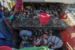 Children unload fish from a boat at San Pya fish market in Yangon, Myanmar. The opening up of the economy has triggered a demand for child labour.