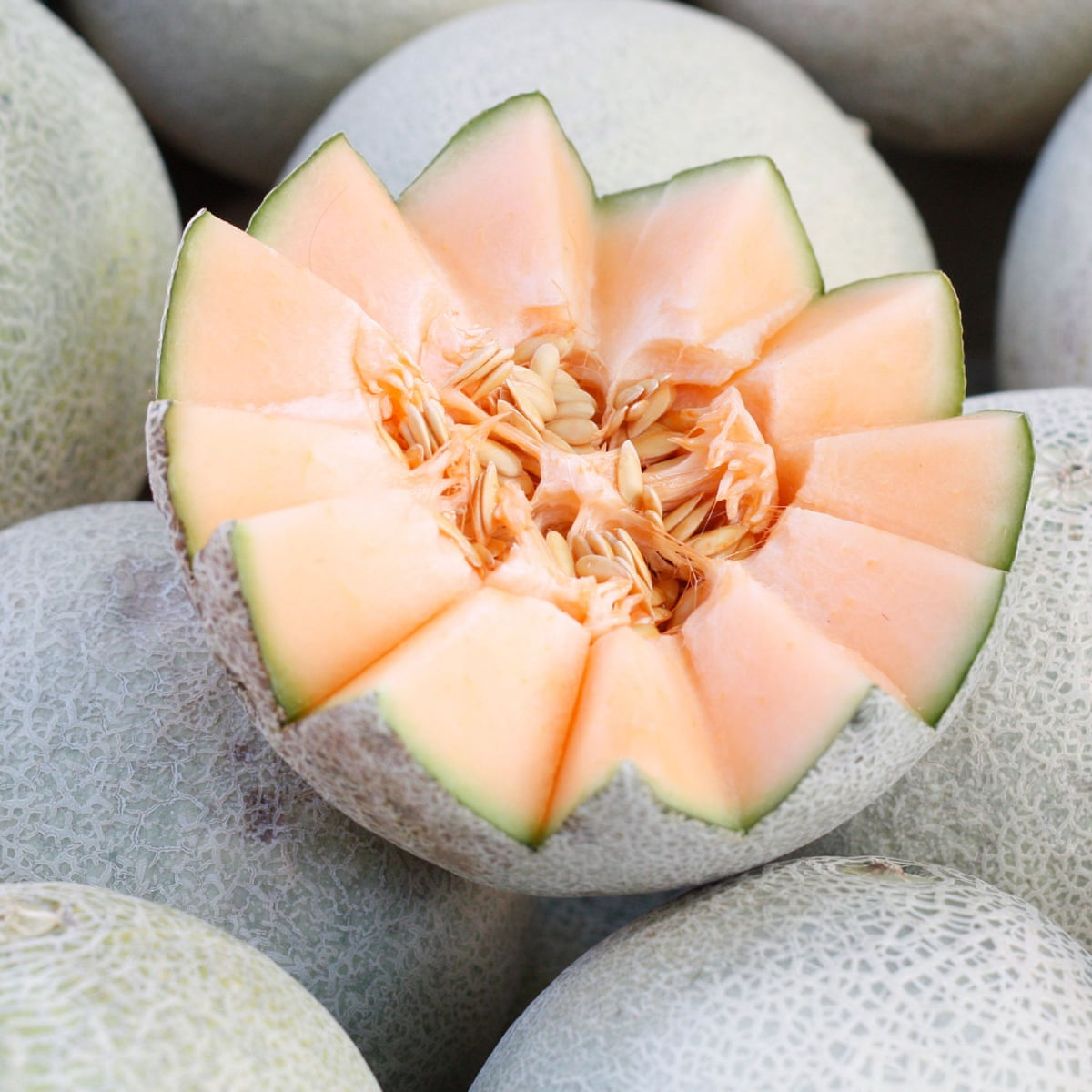 Baller Moves How To Pick A Good Melon And How To Save A Bad One Fruit The Guardian A type of melon (= large fruit with a thick skin) that is round and has yellow or green skin and…. baller moves how to pick a good melon