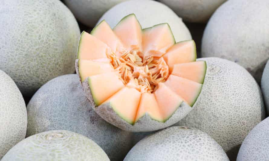 Baller Moves How To Pick A Good Melon And How To Save A Bad One Fruit The Guardian I am here to discuss why cantaloupe and honeydew is the worst fruit ever! baller moves how to pick a good melon