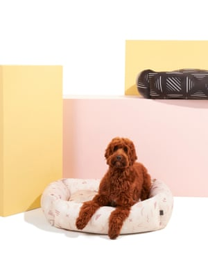 Settle dog beds are filled with recycled plastic and have 78% recycled covers. Fabric is sustainably printed using digital sublimationAbstract dog bed, £124, Settle Beds