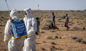 Pest-control sprayers in the desert near Garowe, in the semi-autonomous Puntland region of Somalia.
