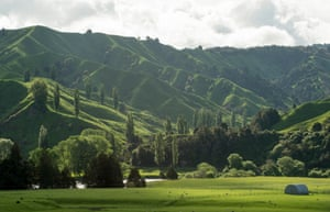 Dairy and sheep farming have had a major impact on rivers in New Zealand, including the Whanganui