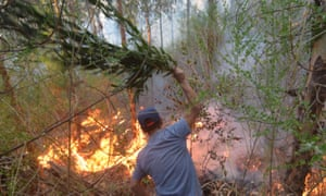 A volunteer tries to extinguish a forest fire in Concepcion, Chile on 28 January.