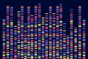 A visualisation of genomic data from a DNA test.