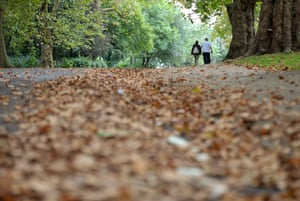 A couple walk through the autumn leaves in a north London park