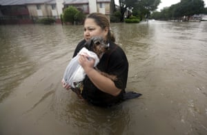 Texas, USA resident carries her dog through floodwater after storms dumped more than a foot of rain in the Houston area.