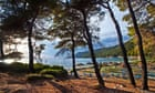 Yamas! On the retsina trail on the Greek island of Skopelos