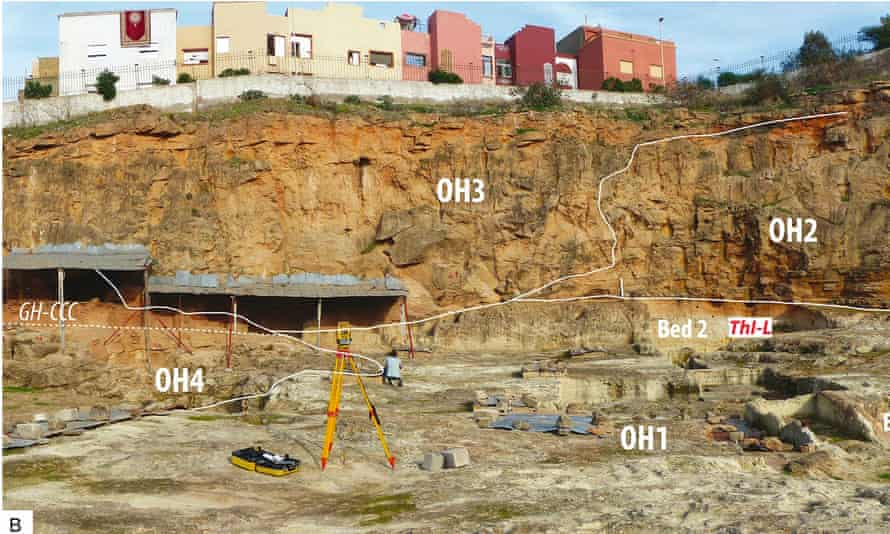 The excavations took place at a quarry on the outskirts of Casablanca, Morocco.