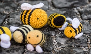 Knitted bees were also taken to the rallies