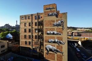 Johannesburg, 2012.