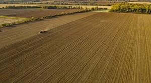 A vast field