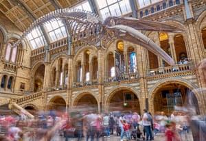 Hintze Hall at Natural History Museum, London.