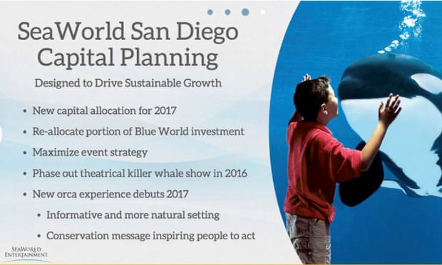 Part of a report from SeaWorld on 9 November 2015 which confirms they will be phasing out the orca shows at San Diego.
