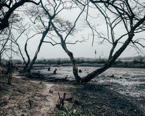 Polluted area in B-Dere, Niger delta, Nigeria