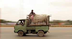 Sacrificial animals are loaded on a caged van ahead of the Muslim festival of Eid al-Adha in Karachi, Pakistan.