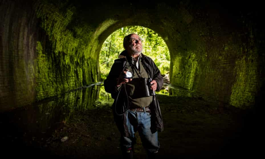 Tony Hutson hunting for bats in a disused railway tunnel in Sussex.