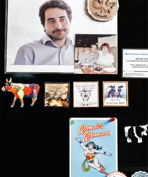 Sharon's fridge with pictures of Dr Giuseppe Iaria and Wonder Woman