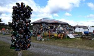 Bottle tree at Lakeside Camping Hain