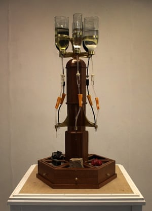 Kazuki Nishinaga, 24, is an MFA sculpture student at the Slade School of Fine Art. He says: 'The machine drips liquid on specimens at a constant interval. With a combination of liquid, specimen and dripping rate, the operator can compose a variety of situations. As erosion is an extremely slow phenomenon, which happens on a geological time scale, in most cases it is impossible to observe changes in real time. However, the visual limitations of the experiment are supplemented by the viewer's imagination.'